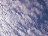2012年11月(霜月)リラックスして温めよう~冷えと自律訓練法 ~の画像