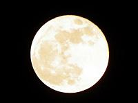 2012年9月(長月) 秋の夜長とデトックスの画像