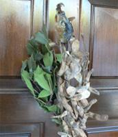 2011年2月(如月)三寒四温、キーワードは「緩む」「開く」の画像